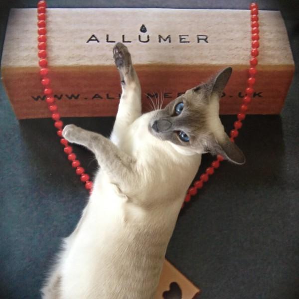 Mojo of Allumer