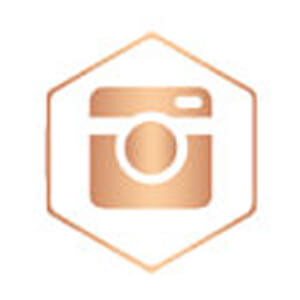 instagram rose gold icon