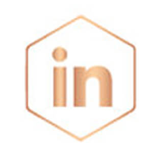 linkedin rose gold icon