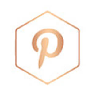 pinterest rose gold icon