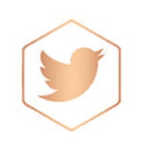 twitter icon rose gold